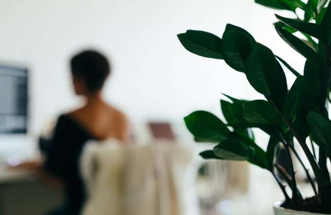 blurry-image-of-woman-at-computer-with-plant2